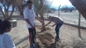 Septiembre estuvo dedicado a la siembra y forestación, como eje de trabajo escolar