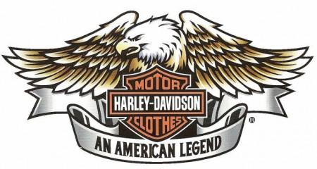 Más de 300 motociclistas de Harley Davidson llegan a San Juan