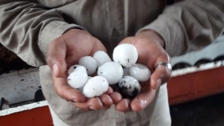 Actualización: respuesta provincial tras las fuertes lluvias