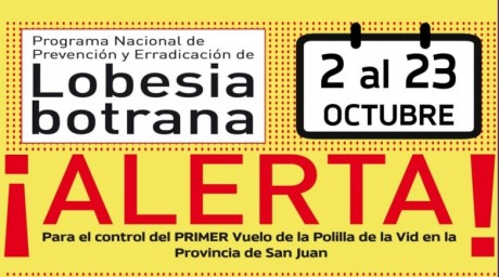 Primer alerta para el control de Lobesia Botrana en San Juan
