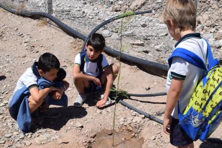 El Colegio Mercedario visitó el Centro Ambiental Anchipurac