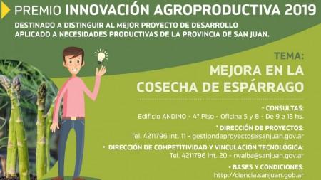 Convocan a participar en un concurso para mejorar la cosecha de espárragos