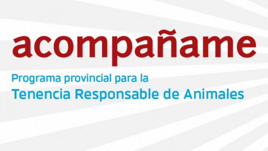 Acompañame: nuevo calendario de esterilización de animales de compañía