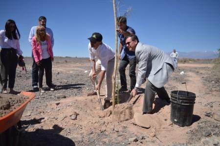 Con 6000 árboles comenzó la reforestación minera en Iglesia
