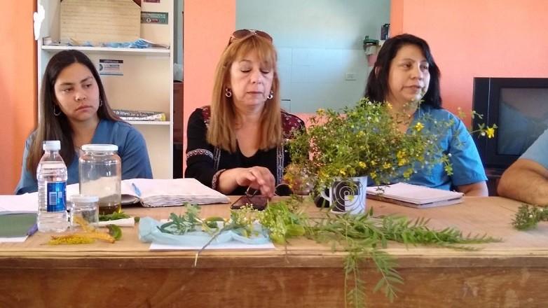 Pueblos Originarios expusieron acerca de los beneficios de la medicina ancestral