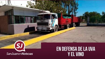En defensa de la uva y el vino   #SanJuanEnNoticias