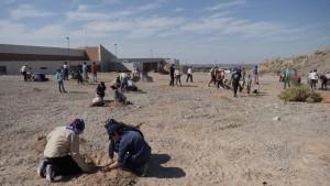 Scouts plantaron árboles en Anchipurac