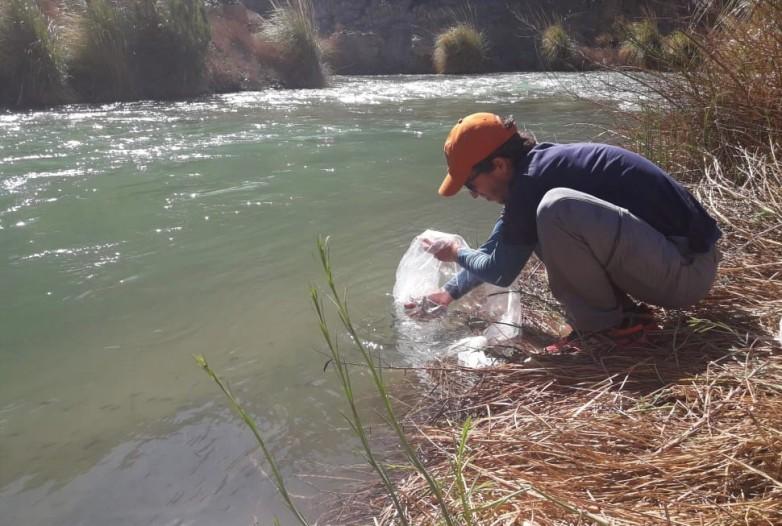 Ambiente vedó la pesca en el río Calingasta por un año