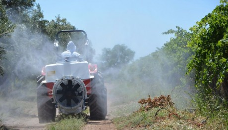 Lobesia botrana: El Gobierno pone a disposición maquinaria para aplicar insecticidas